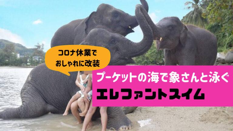 エレファントスイムの象さんビーチ